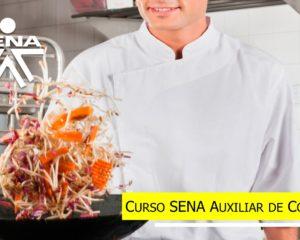curso sena auxiliar de cocina