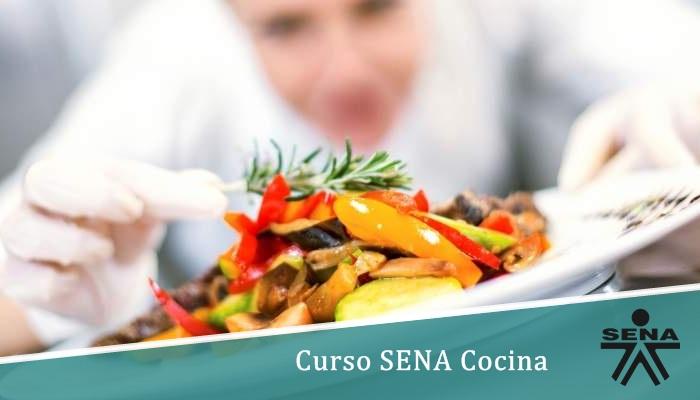 Curso SENA Cocina
