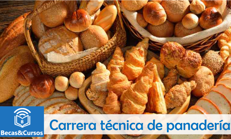 Carrera Técnica de Procesos de Panadería SENA