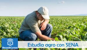 Convocatoria Agro SENA 2019