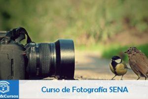 Curso de Fotografia SENA